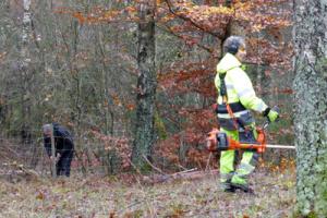 Gunnel har koll på läget, Roland M klipper sly Foto: Judit Brolid