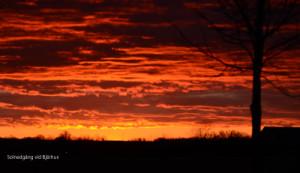 Solnedgång vid Bjärhus