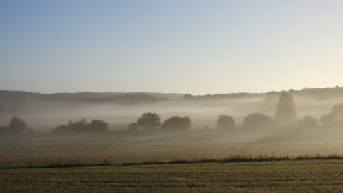 Tidig morgon vid Skankhult